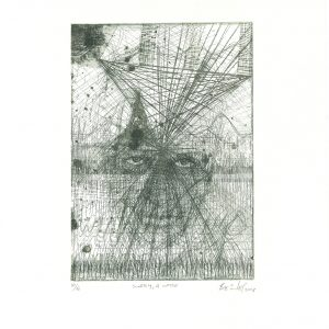 Bevan de Wet, 2013, Subtly, A Noise, etching, 35x26,5cm