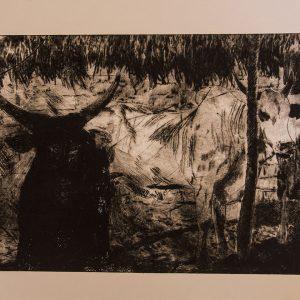 David Forbes – Black Bull, White Bull