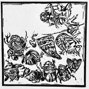 Elrie Joubert – As ek 'n miskruier was, het ek jou weggedra (If I was a dung beetle, I would carry you away)